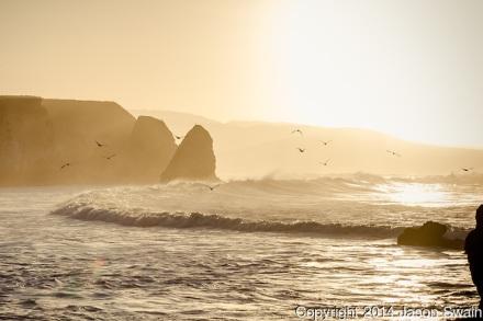 Freshwater Bay (© Jason Swain)